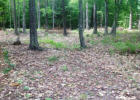 198 Pond Brook Rd #14, West Chesterfield, NH 03466, $92,500