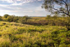 Collingsworth River Rnch, Shamrock, TX 79079, $2,208,000