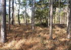 59 Booster Club Rd #58, Bainbridge, GA 39819, $11,900