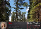 Lot 10 Blk A, Brian Head, UT 84719, $29,900