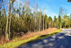 4 Oaks Rd, Little Mountain, SC 29075, $48,000