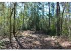 Tract 2 Cr 232 County Rd, Richards, TX 77873, $168,000
