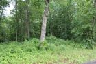 Vacant lot in Bethpage  TN - 37022