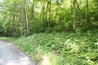 Vacant lot in New Tazewell  TN - 37825