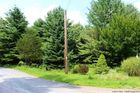 Vacant lot in Kerhonkson  NY - 12446