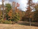 Vacant lot in Chattanooga  TN - Lookout Valley Neighborhood Association