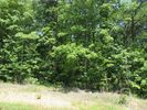 Vacant lot in Rocky Top  TN - 37769