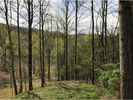Vacant lot in Unicoi  TN - 37692
