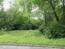 Vacant lot in Chattanooga  TN - Fort Cheatem
