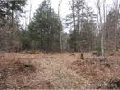 Vacant lot in Stratford  NY - 13470