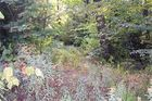 128 sqft  vacant lot in Maryland  NY - 12116