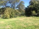 Vacant lot in Chattanooga  TN - Piney Woods