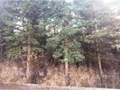Vacant lot in Herkimer  NY - 13350