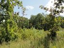 2240 sqft  vacant lot in Englewood  TN - 37329