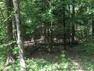 Vacant lot in Mount Tremper  NY - 12457