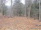 Vacant lot in Fairfield  NY - 13406